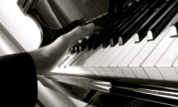 © www.piano-pianino-klavir.cz