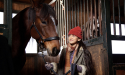 Das Pferd auf dem Balkon, © Mini Film/ Delia Wöhlert