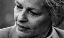 Bild Marianne Gruber: Erinnerungen eines Narren